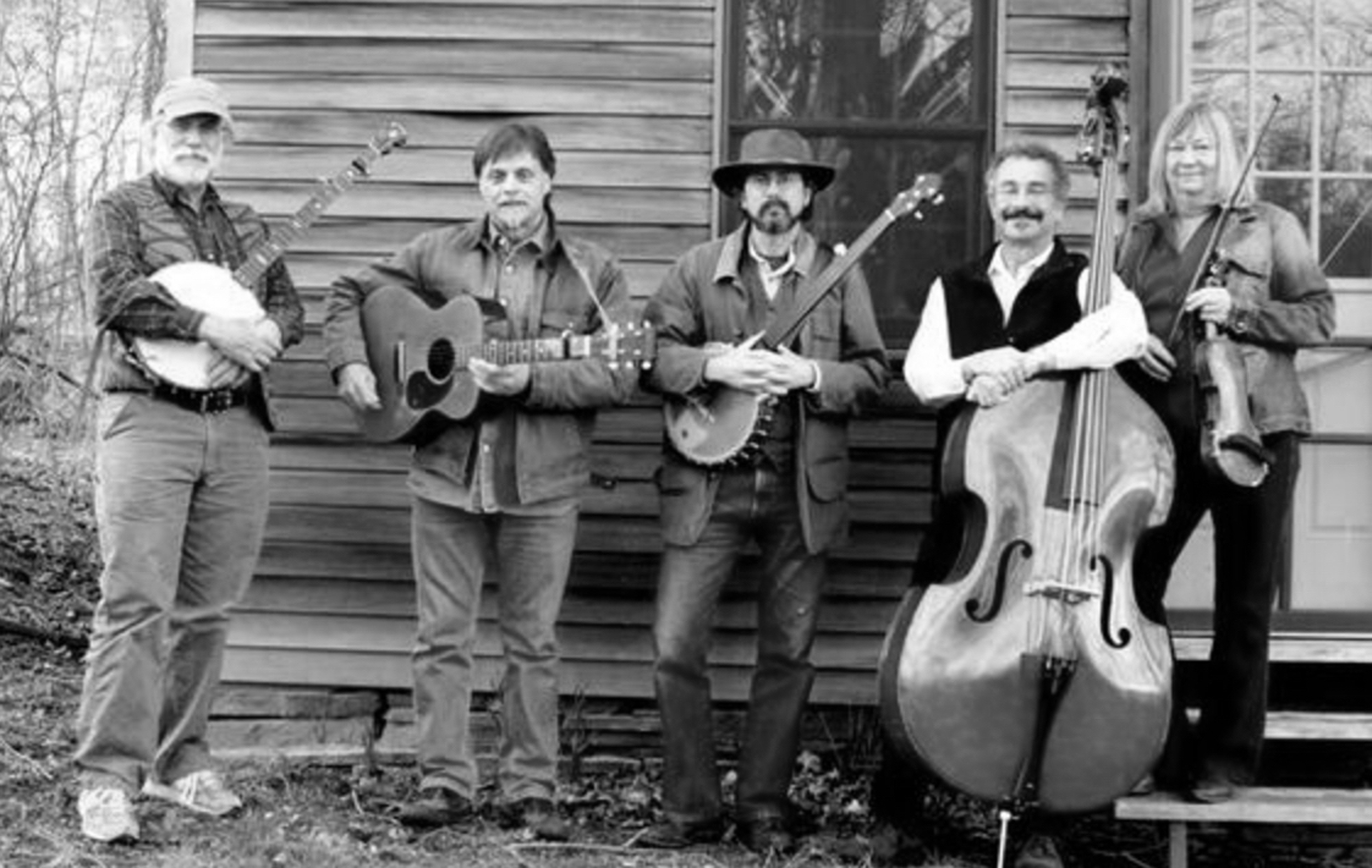 Loosely Wound String Band